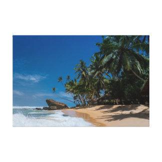 Palmen und blauer Himmel Leinwanddruck
