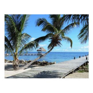 Palmen und Pier in Belize Postkarte