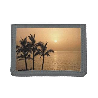Palmen und romantischer Sonnenuntergang