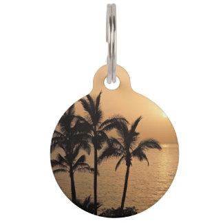 Palmen und romantischer Sonnenuntergang Haustiermarke