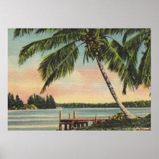 Palmen Vintag Poster