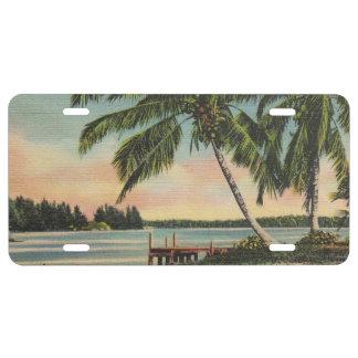Palmen Vintag US Nummernschild
