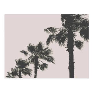 Palmen von Wakayama Postkarte