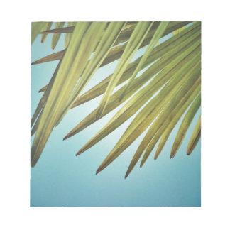 Palmenwedel am Sommerhimmel Notizblock