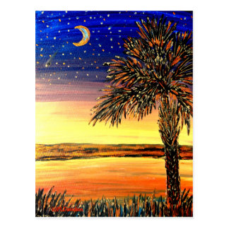 Palmetto-Sonnenuntergang groß Postkarte