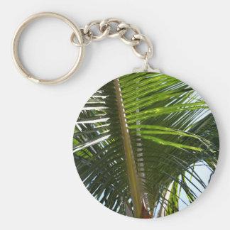Palmwedel auch schlüsselanhänger