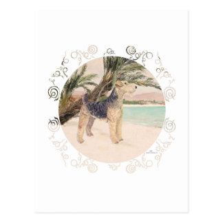 Palmy Strand Postkarte