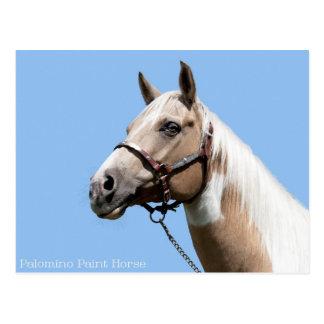 Palomino-Farben-Pferdeporträt Postkarte