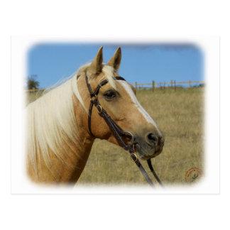 Palomino-Pferd 9R015D-184 Postkarte