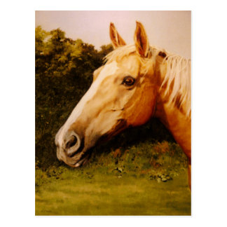 Palomino-Pferd mit weißer Flamme Postkarte