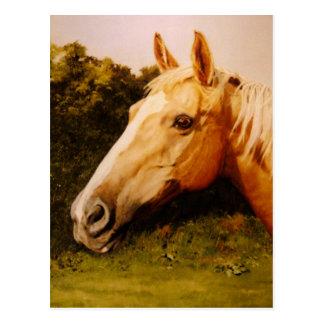 Palomino-Pferdekunst Postkarte