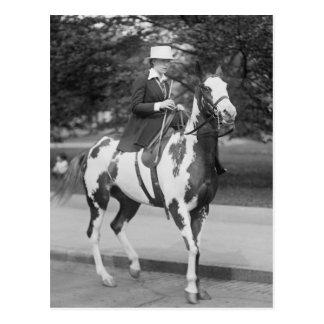 Palomino Pony, 1915 Postkarte