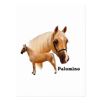 Palomino Postkarte