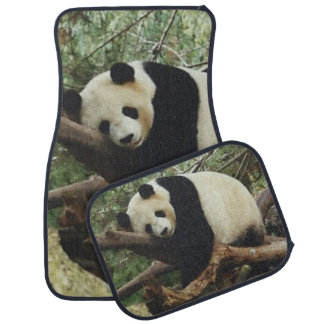Panda-Bär Automatte