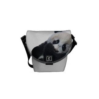 Panda-Bär Kurier Taschen