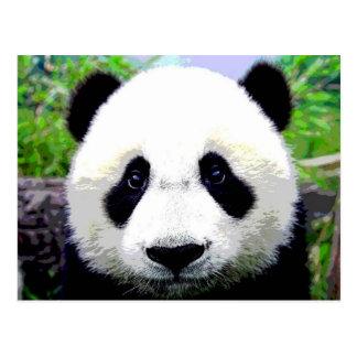 Panda-Bär Postkarte