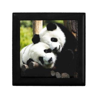 Panda-Bären Kleine Quadratische Schatulle