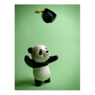 Panda-Bärn-Abschluss-KappeThrow Postkarte