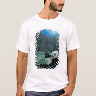 Panda, der Bambus durch Flussufer, Wolong, 2 isst T-Shirt
