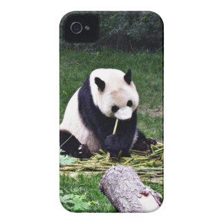 Panda, der Bambus isst Case-Mate iPhone 4 Hülle