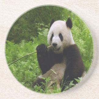 Panda Getränkeuntersetzer