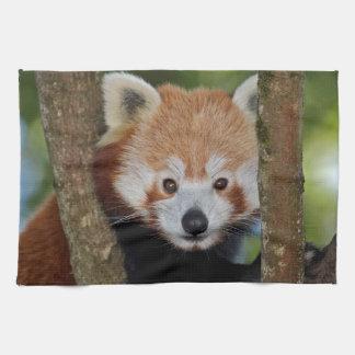 Panda-Porträt-Geschirrtuch Geschirrtuch