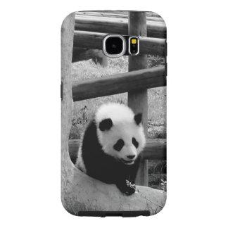 Panda - Schwarzweiss-Fotografie