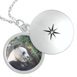 Panda-Sterlingsilberlocket-Halskette Medaillon