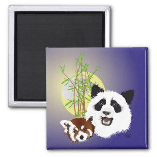 Panda Treffen Magnet Quadratischer Magnet