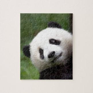 PandaBärenjunges Puzzle