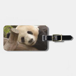 PandaSD010 Koffer Anhänger