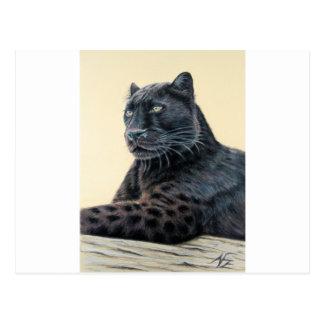 Panther-Jaguar Postkarte