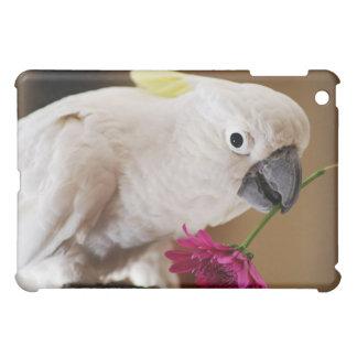 Papagei er Lieben ich oder nicht iPad Mini Hülle