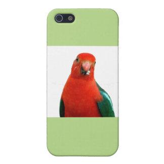 Papagei iPhone Fall Etui Fürs iPhone 5