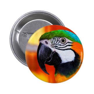 Papagei Runder Button 5,7 Cm