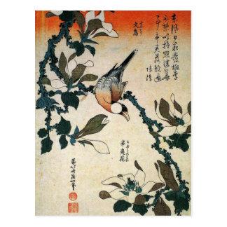 Papagei und Blumen Postkarte