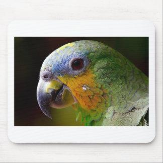 Papageien-Amazonas-Tier-Vogel-Grün-exotischer Mousepad