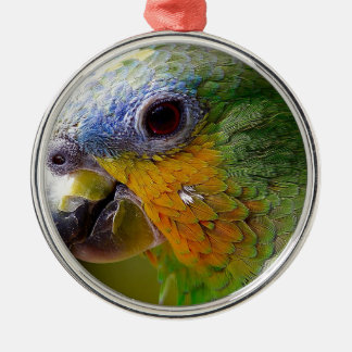 Papageien-Amazonas-Tier-Vogel-Grün-exotischer Silbernes Ornament