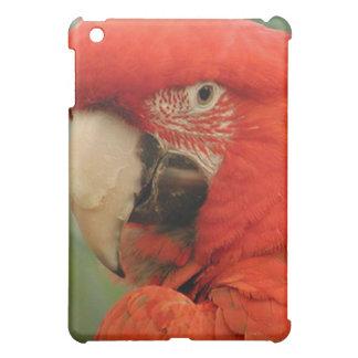 Papageien iPad Mini Hülle