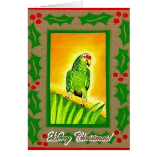 Amazonas papagei karten - Weihnachtskarten amazon ...