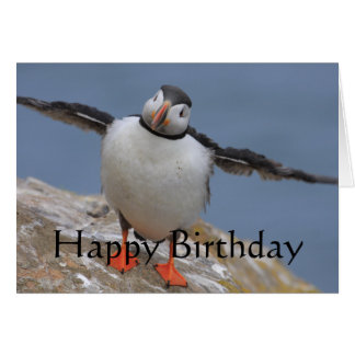 Papageientaucher-Geburtstags-Grüße Karte