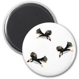 Papageientaucher-im Flug Küstenvogel-Kunst Runder Magnet 5,1 Cm