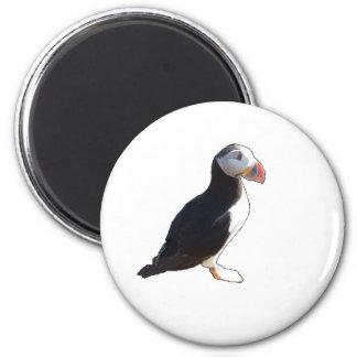 Papageientaucher Runder Magnet 5,1 Cm