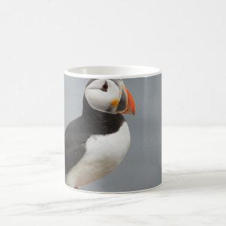 Papageientaucher-Vogel-Antarktis-Natur Kaffeetasse
