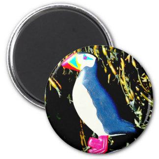 Papageientauchermagnet Runder Magnet 5,1 Cm