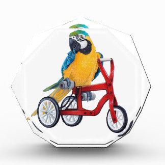 PapageiMacaw auf Dreiradfahrrad Acryl Auszeichnung
