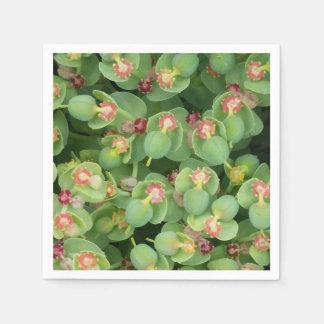 Papierservietten-kleine grüne Flora Papierservietten