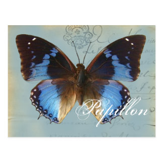 Papillon Blau Postkarte
