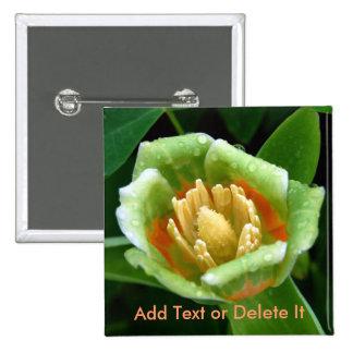 Pappelbaum-Tulpe-Button