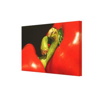 Paprika in Love Galerie Falt Leinwand